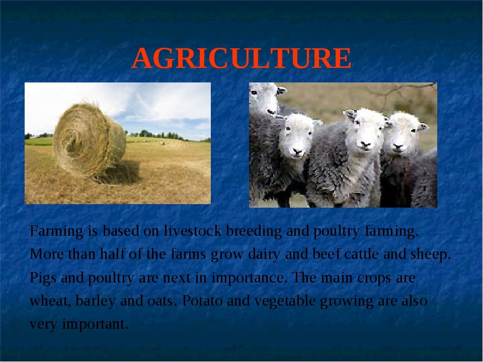 AGRICULTURE Farming is based on livestock breeding and poultry farming. More...