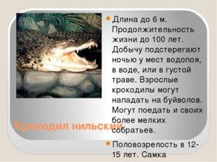 Крокодил нильский Длина до 6 м. Продолжительность жизни до 100 лет. Добычу п