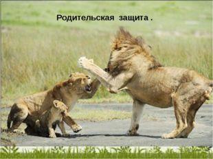 Родительская защита .