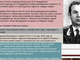 Герой Советского Союза, командир батальона 20-й гвардейской механизированной