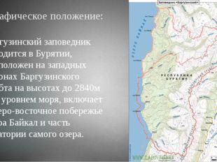Географическое положение: Баргузинский заповедник находится в Бурятии, распол