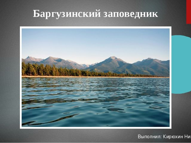 Баргузинский заповедник Выполнил: Кирюхин Никита 21-МЭВ