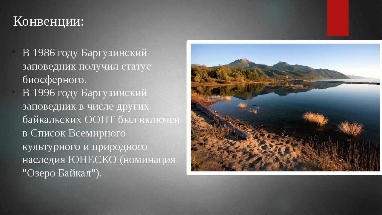 Конвенции: В 1986 году Баргузинский заповедник получил статус биосферного. В...