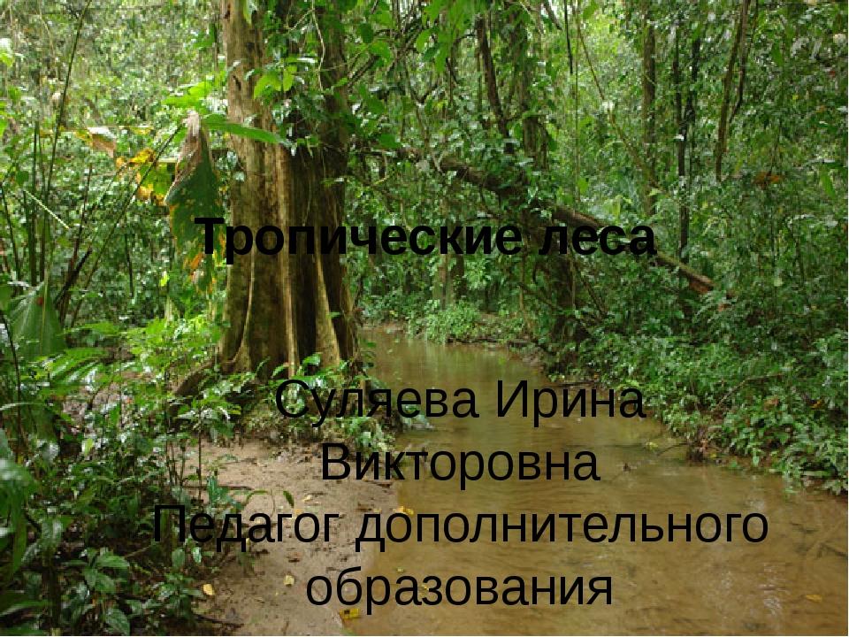 Тропические леса Суляева Ирина Викторовна Педагог дополнительного образования