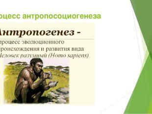 Процесс антропосоциогенеза