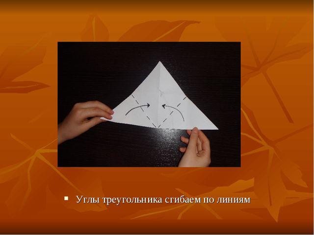 Углы треугольника сгибаем по линиям