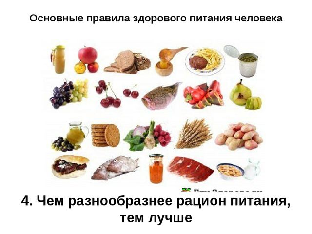 Основные правила здорового питания человека 4. Чем разнообразнее рацион питан...