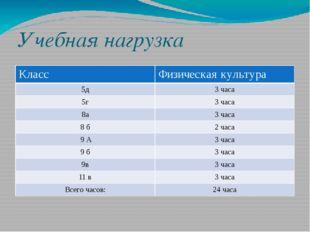 Учебная нагрузка Класс Физическая культура 5д 3 часа 5г 3 часа 8а 3 часа 8 б