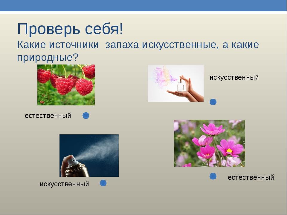Проверь себя! Какие источники запаха искусственные, а какие природные? естест...