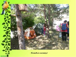Поставили палатки! Поставили палатки!