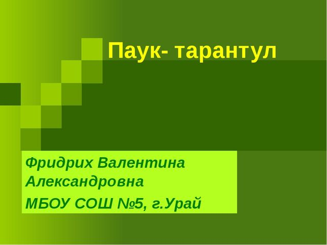 Паук- тарантул Фридрих Валентина Александровна МБОУ СОШ №5, г.Урай