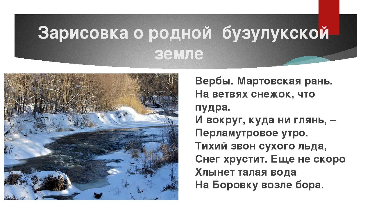 Зарисовка о родной бузулукской земле Вербы. Мартовская рань. На ветвях снежо...