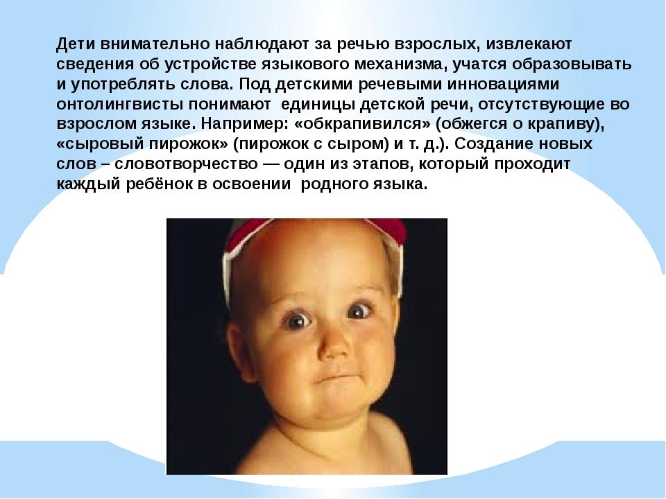 Дети внимательно наблюдают за речью взрослых, извлекают сведения об устройств...