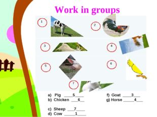 Work in groups a) Pig ____5____ f) Goat ____3___ b) Chicken ___6__ g) Horse