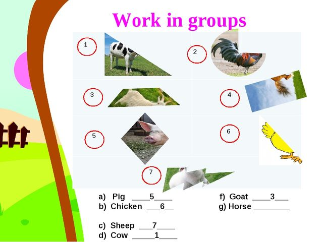 Work in groups a) Pig ____5____ f) Goat ____3___ b) Chicken ___6__ g) Horse...