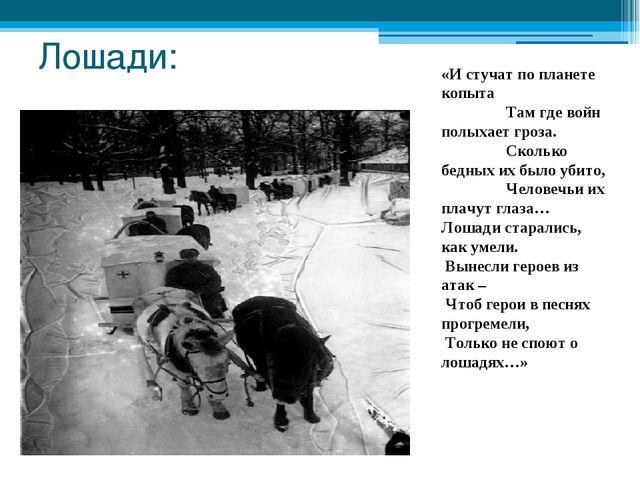Лошади: «И стучат по планете копыта         Там где войн полыхает гро...