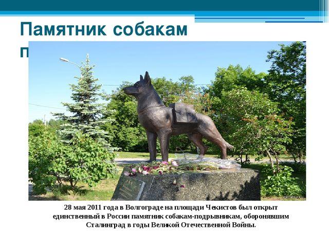 Памятник собакам подрывникам 28 мая 2011 года в Волгограде на площади Чекисто...
