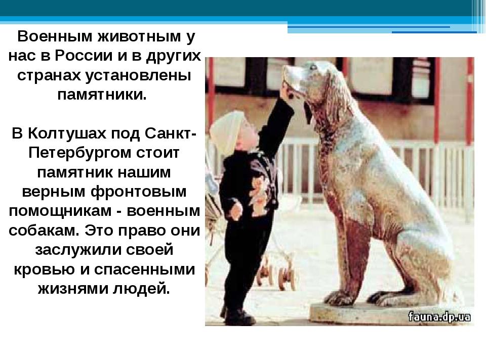 Военным животным у нас в России и в других странах установлены памятники. В...