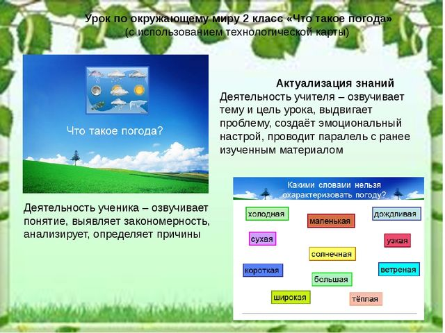 Актуализация знаний Деятельность учителя – озвучивает тему и цель урока, выд...