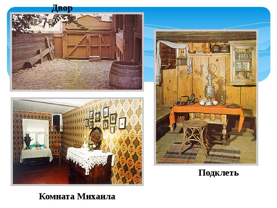 Двор Подклеть Комната Михаила