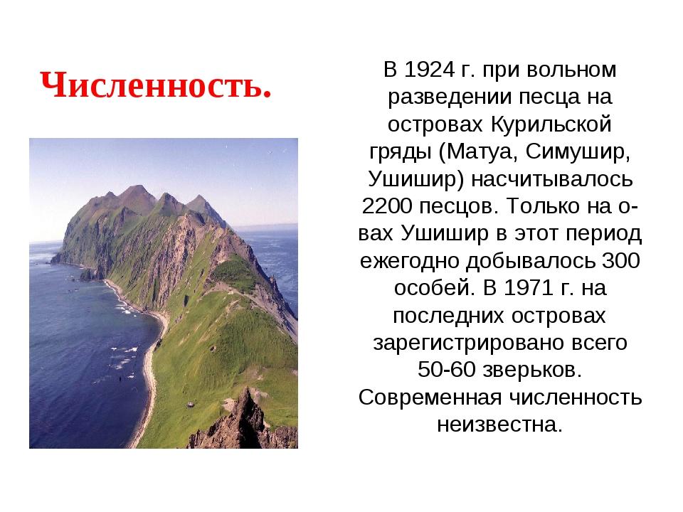 В 1924 г. при вольном разведении песца на островах Курильской гряды (Матуа, С...