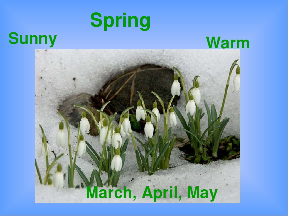 Spring March, April, May Warm Sunny
