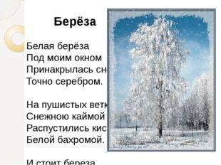 Берёза Белая берёза Под моим окном Принакрылась снегом, Точно серебром. На п