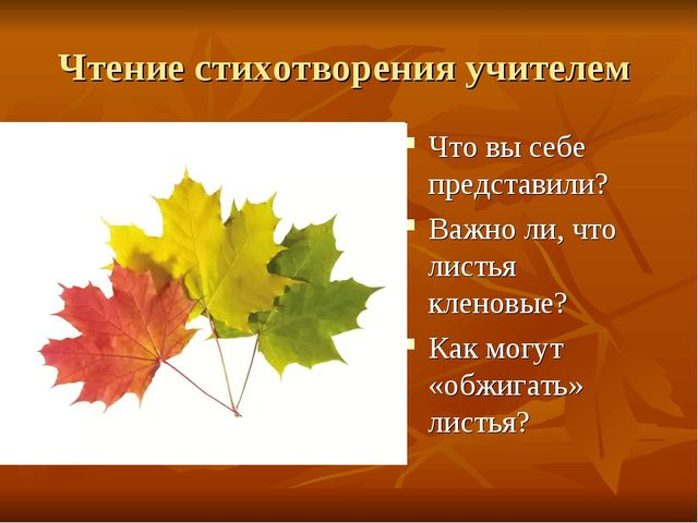 Чтение стихотворения учителем Что вы себе представили? Важно ли, что листья к...