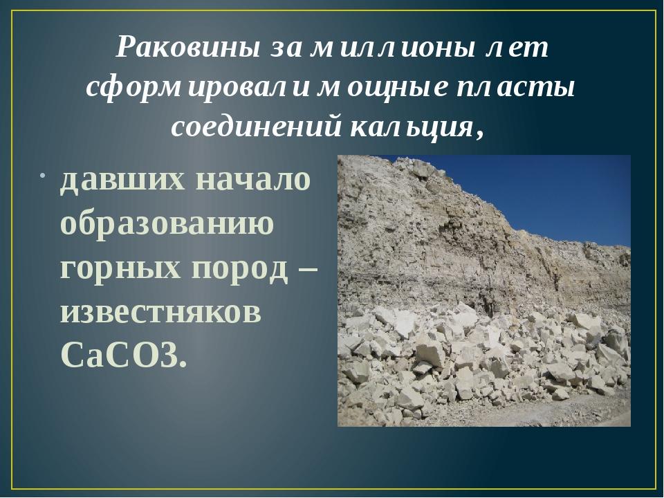 Раковины за миллионы лет сформировали мощные пласты соединений кальция, давши...