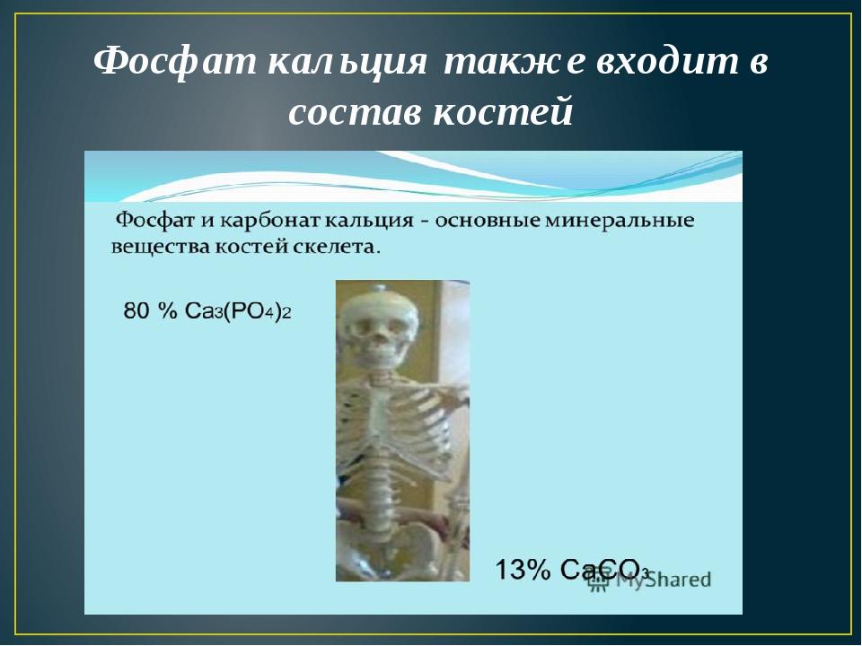 Фосфат кальция также входит в состав костей