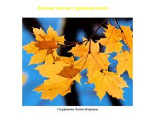 Желтые листья с деревьев летят. Позднякова Лилия Игоревна Позднякова Лилия Иг