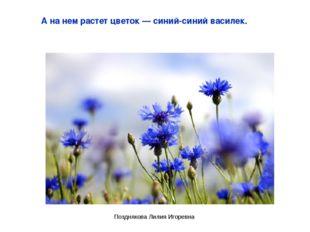 А на нем растет цветок — синий-синий василек. Позднякова Лилия Игоревна Поздн