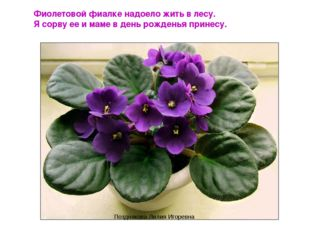 Фиолетовой фиалке надоело жить в лесу. Я сорву ее и маме в день рожденья прин