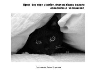 Прям без горя и забот, спал на белом одеяле совершенно чёрный кот Позднякова