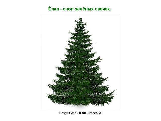 Ёлка - сноп зелёных свечек, Позднякова Лилия Игоревна Позднякова Лилия Игоревна