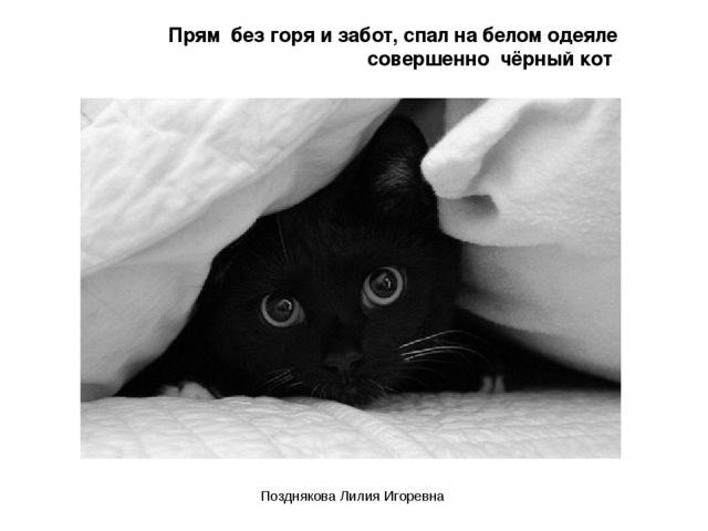Прям без горя и забот, спал на белом одеяле совершенно чёрный кот Позднякова...