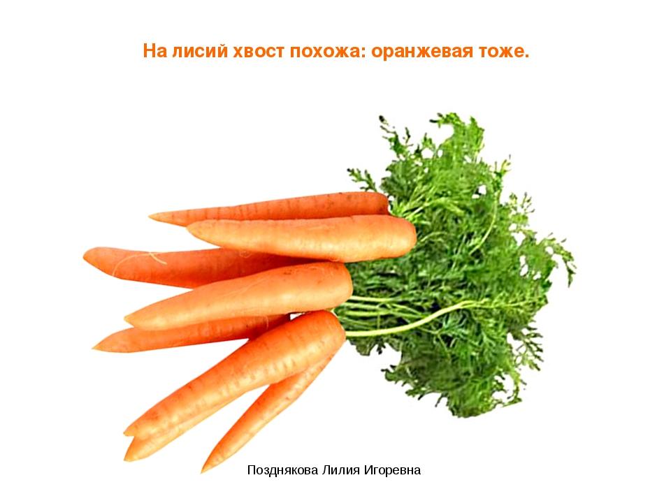 На лисий хвост похожа: оранжевая тоже. Позднякова Лилия Игоревна Позднякова Л...