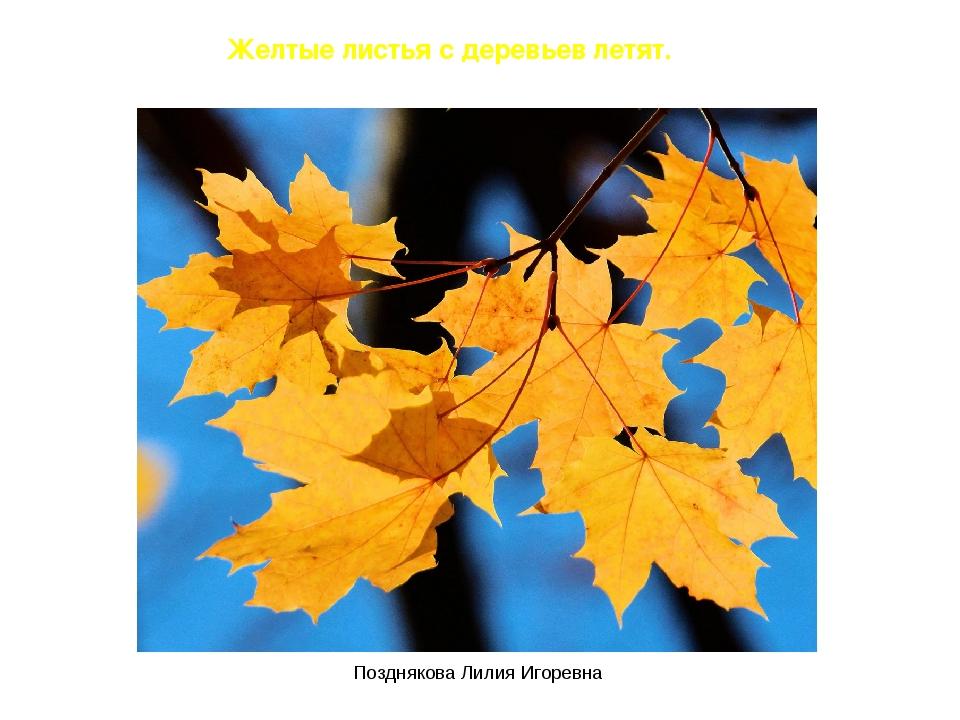 Желтые листья с деревьев летят. Позднякова Лилия Игоревна Позднякова Лилия Иг...