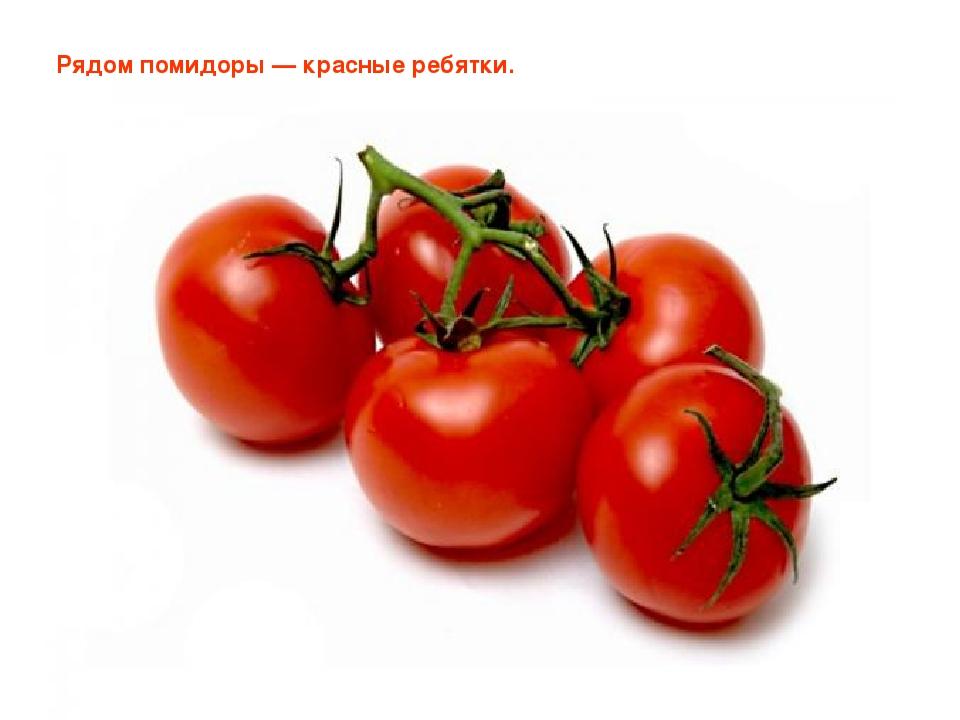 Рядом помидоры — красные ребятки. Позднякова Лилия Игоревна Позднякова Лилия...