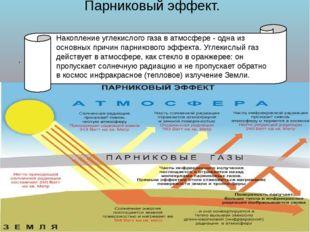 Парниковый эффект. . Накопление углекислого газа в атмосфере - одна из основ