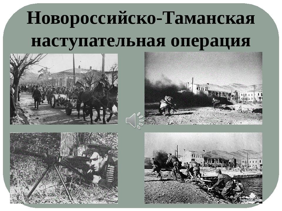 Новороссийско-Таманская наступательная операция
