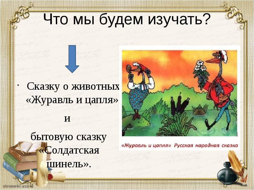 Что мы будем изучать? Сказку о животных «Журавль и цапля» и бытовую сказку «С...