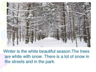 Winter is the white beautiful season.The trees are white with snow. There is