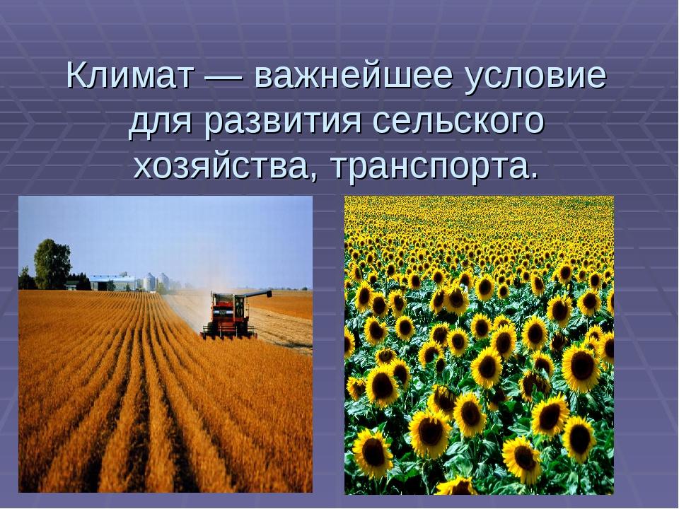 Климат — важнейшее условие для развития сельского хозяйства, транспорта.