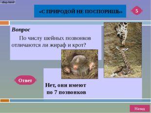 Вопрос Местные жители Алтая утверждают, что это животное сочетает в себе ка