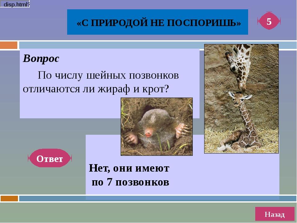 Вопрос Местные жители Алтая утверждают, что это животное сочетает в себе ка...