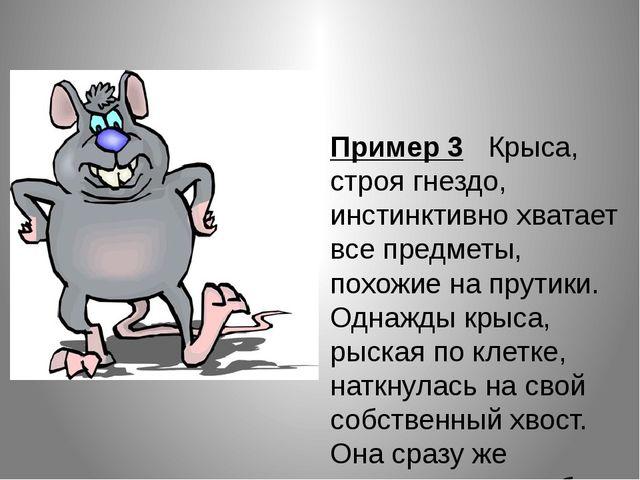 Пример 3 Крыса, строя гнездо, инстинктивно хватает все предметы, похожие на...