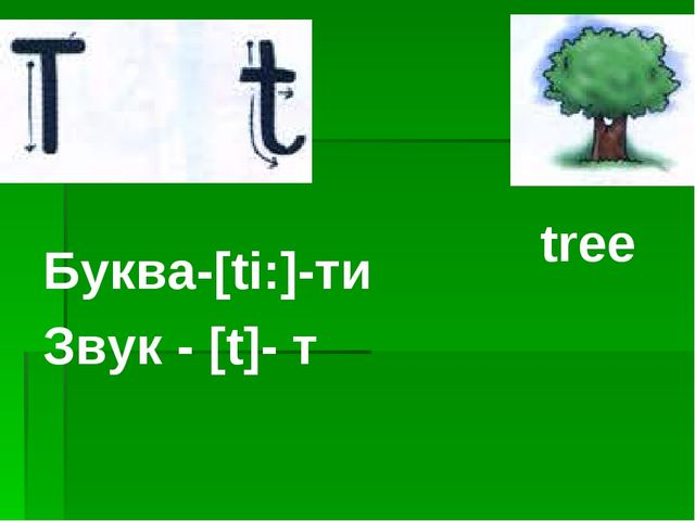 Буква-[ti:]-ти Звук - [t]- т tree