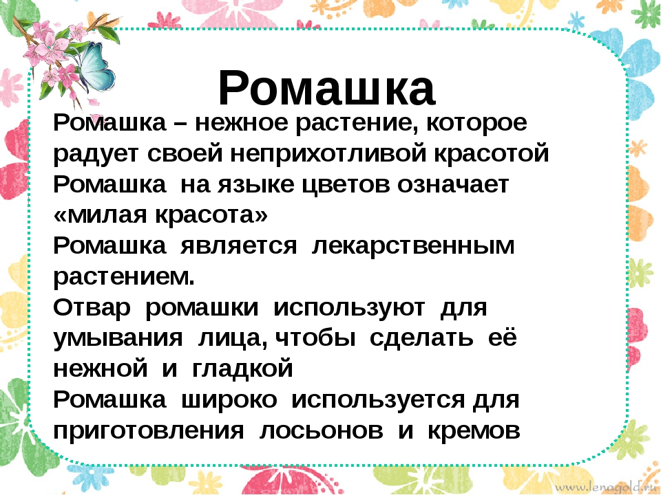 Ромашка Ромашка – нежное растение, которое радует своей неприхотливой красото...