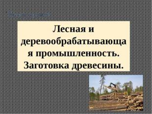 Тема урока Лесная и деревообрабатывающая промышленность. Заготовка древесины.